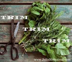 Trim- www.JuliaNicholson.com